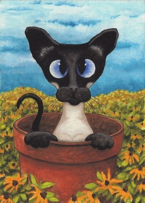 CHATS-AB-SIAMESE FLOWER POT