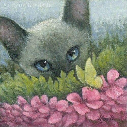 CHATS-LB-SPRING CAT