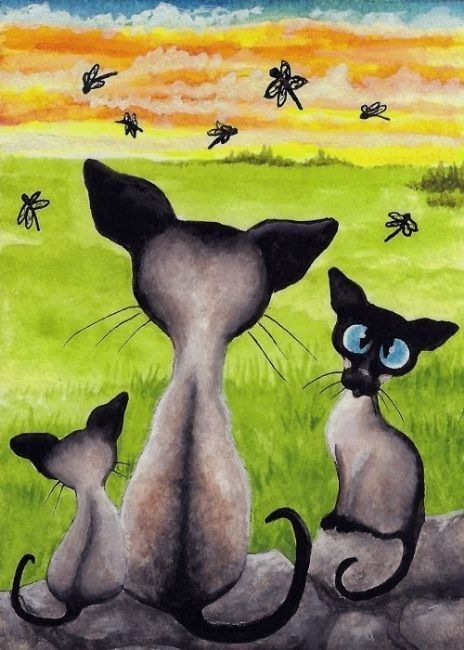 CHATS-AB-SIAMESE SUNSET DRAGONFLIES