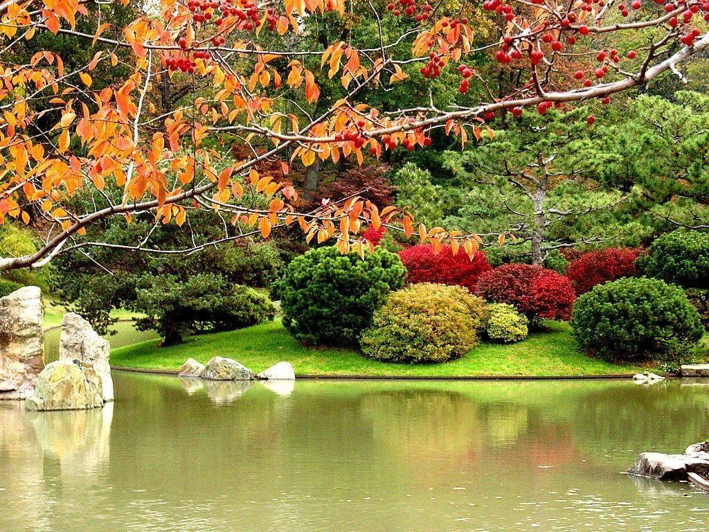 Jardin japonais 4 for Paysage jardin japonais